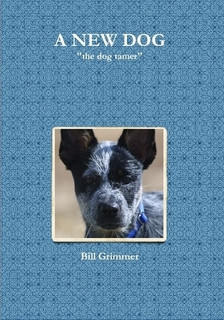 A New Dog Paperback